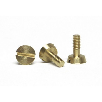 Metric screw for motor...