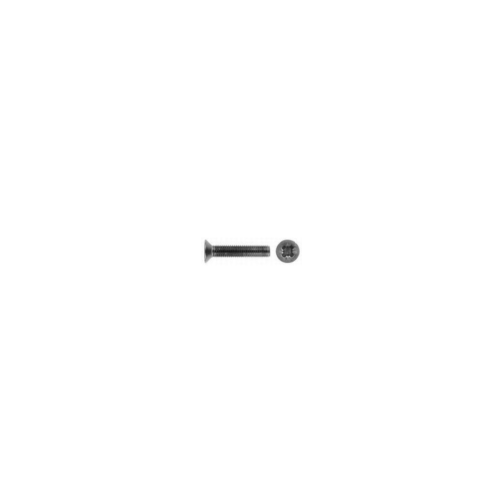 2x6 mm pzd skrue